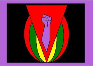 Flag created by Sarah Hopkins symbolizing working class, queer liberation