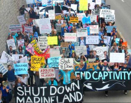 Marineland Animal Defense: 'Neither Tanks nor Tankers'
