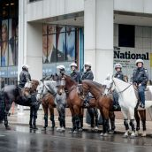 Horse cops to protect Barrick