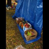 food holds down the tarps!