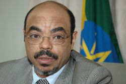 Ethopian-Canadians protest PM Meles Zenawi at the G20