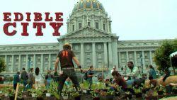 "Cinema Politica UofT Screening: ""Edible City"""