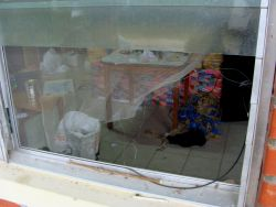 "Nov. 28, 2009 - A broken window outside one of the classrooms of the Red Comal campesino school.  The police claimed that they were investigating the school on suspicion that they were amassing weapons.  The director of the school explained, ""we teach people why they are poor - for that, we are a threat."""